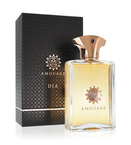 Amouage Dia Pour Homme EDP 100 ml Pentru bărbati